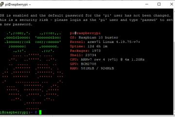 树莓派安装screenFetch并开机运行
